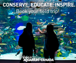 Visit Ripley's Aquarium of Canada with your students!